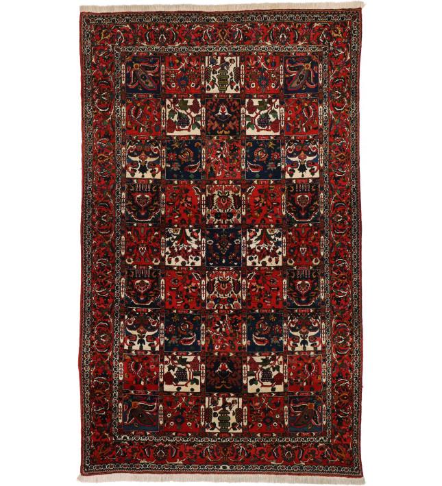 Bakhtiari 162X265