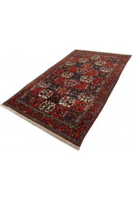 Bachtiar 162X265